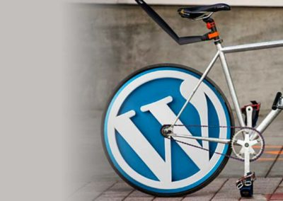 Curso de <b>WordPress</b>