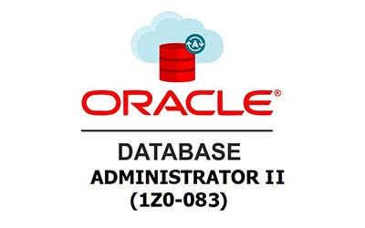 Curso de <b>Oracle Database Administration I y II (1Z0-082 Y 1Z0-083)</b>