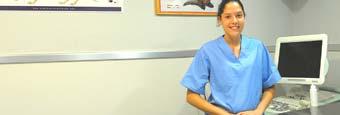 Curso de ayudante técnico veterinario. atv veterinariaCurso de Auxiliar Clínica Veterinaria. auxiliar veterinaria