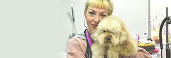 Curso de ayudante técnico veterinario. atv veterinaria