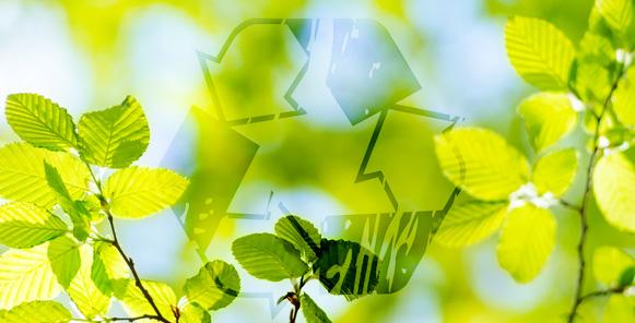 Impactos Medioambientales